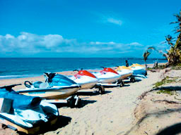 Jet Ski Island Tours Or Jet Ski Safari